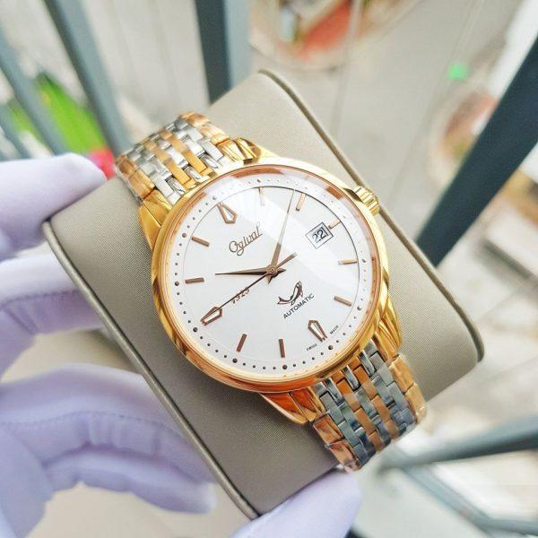 Đồng hồ nam OGIVAL OG1929-24AGSR-T